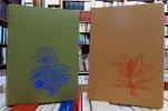 Flore et végétation des Alpes I. étage alpin II. étage subalpin (en 2 volumes). FAVARGER Claude